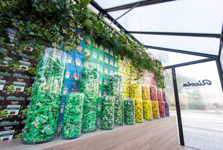 Imagen de bodegón de productos Ricola dentro de un invernadero
