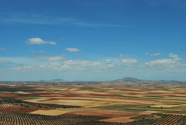 Imagen de un paisaje con cultivos de secano