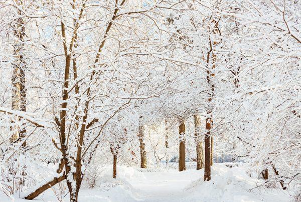Cómo afecta el invierno a los síntomas de epoc